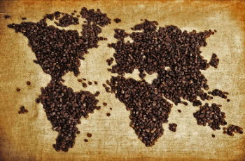 Complete Guide to the Best Types of Coffee Beans
